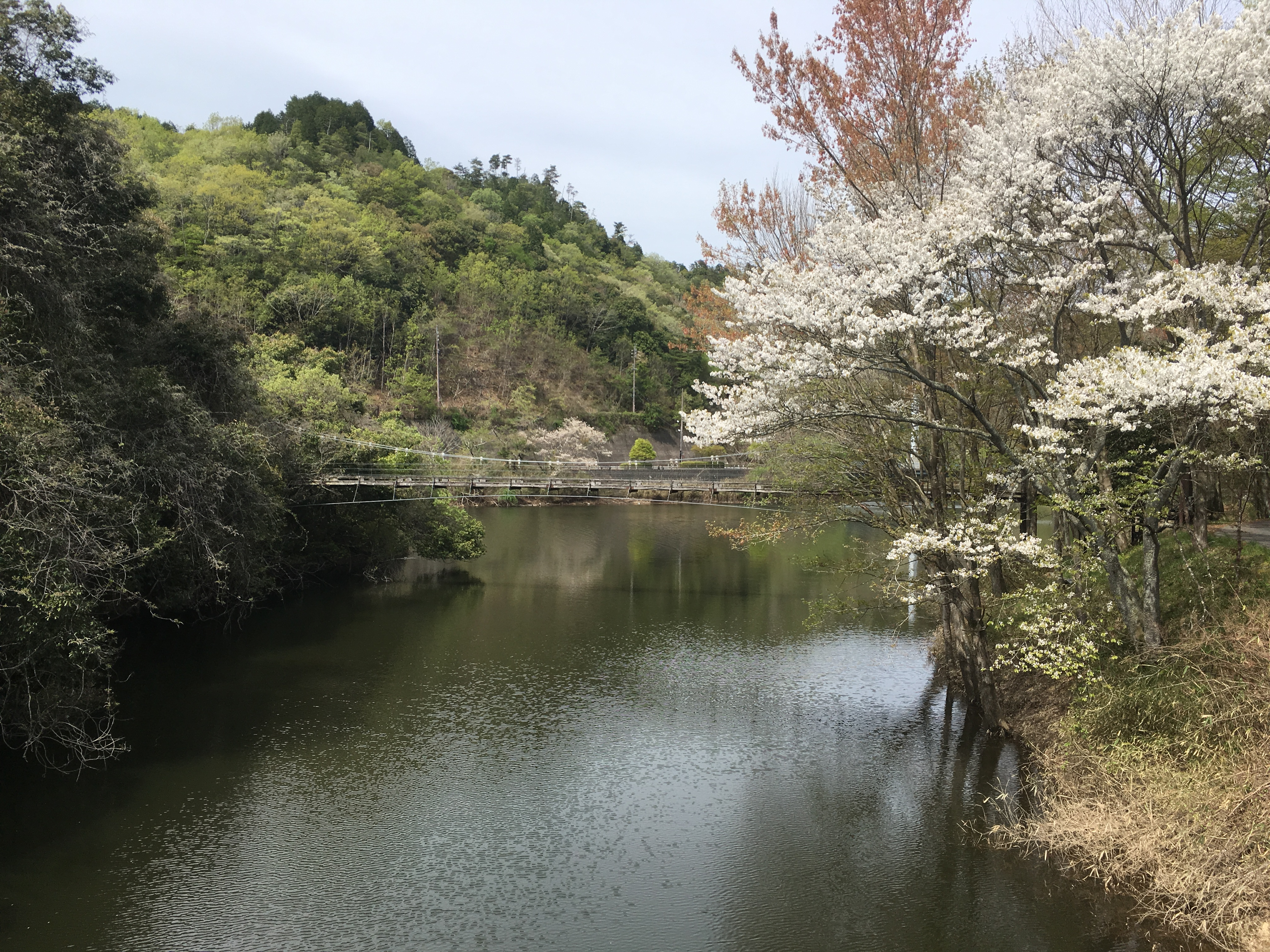 小渕ため池公園
